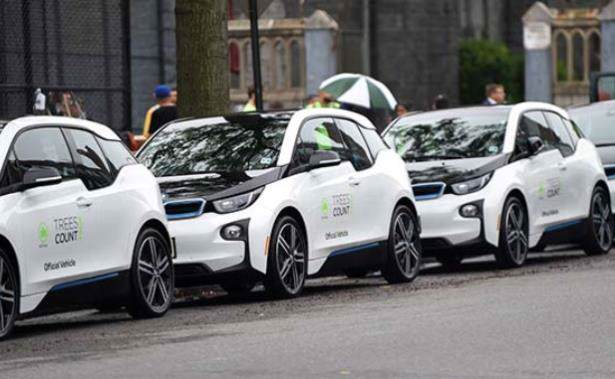 bmw_i3_treescount_2015