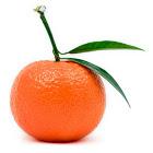 mandarin's Avatar